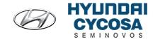Hyundai Cycosa